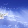 О чём говорит нам праздник Троицы?