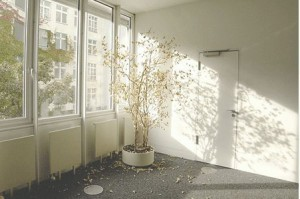 sun_window_1