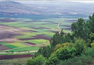 view_israel-300x207